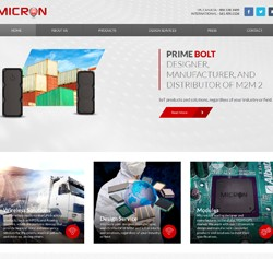 micronelectronics-small